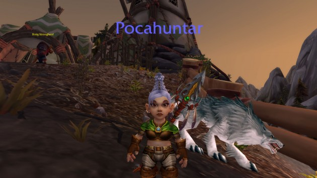 gnome hunter