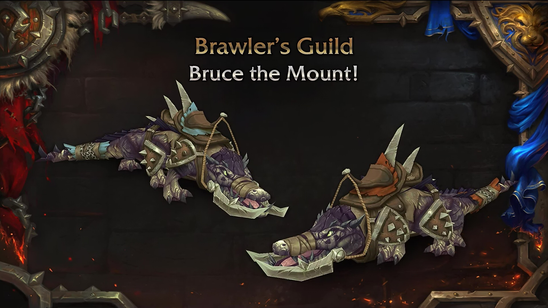 Brawler's Guild bruce the mount
